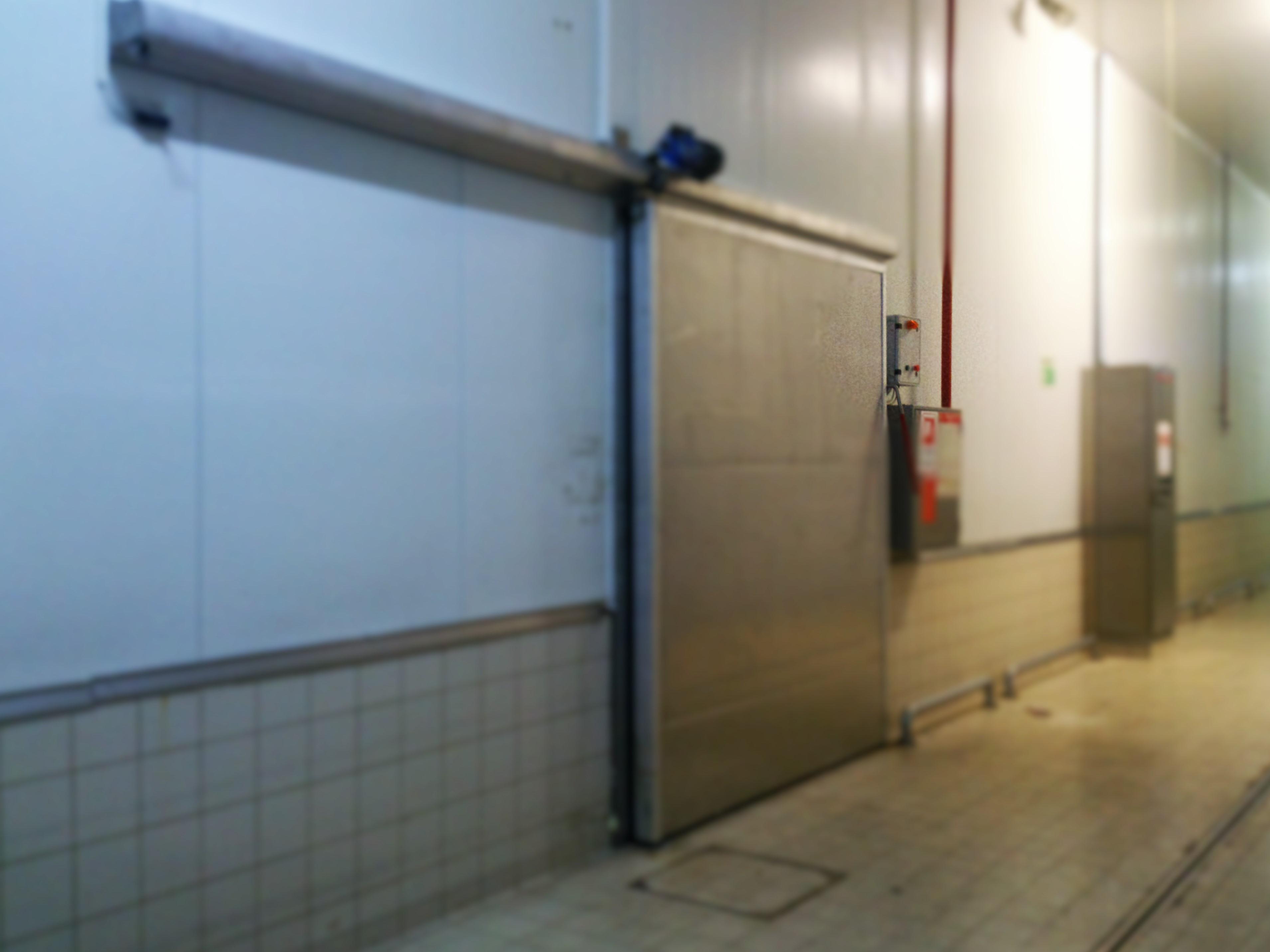 otomatik soğuk oda kapısı